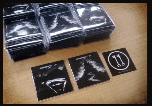 LAYR / Necroparthenophagy Split Album Art