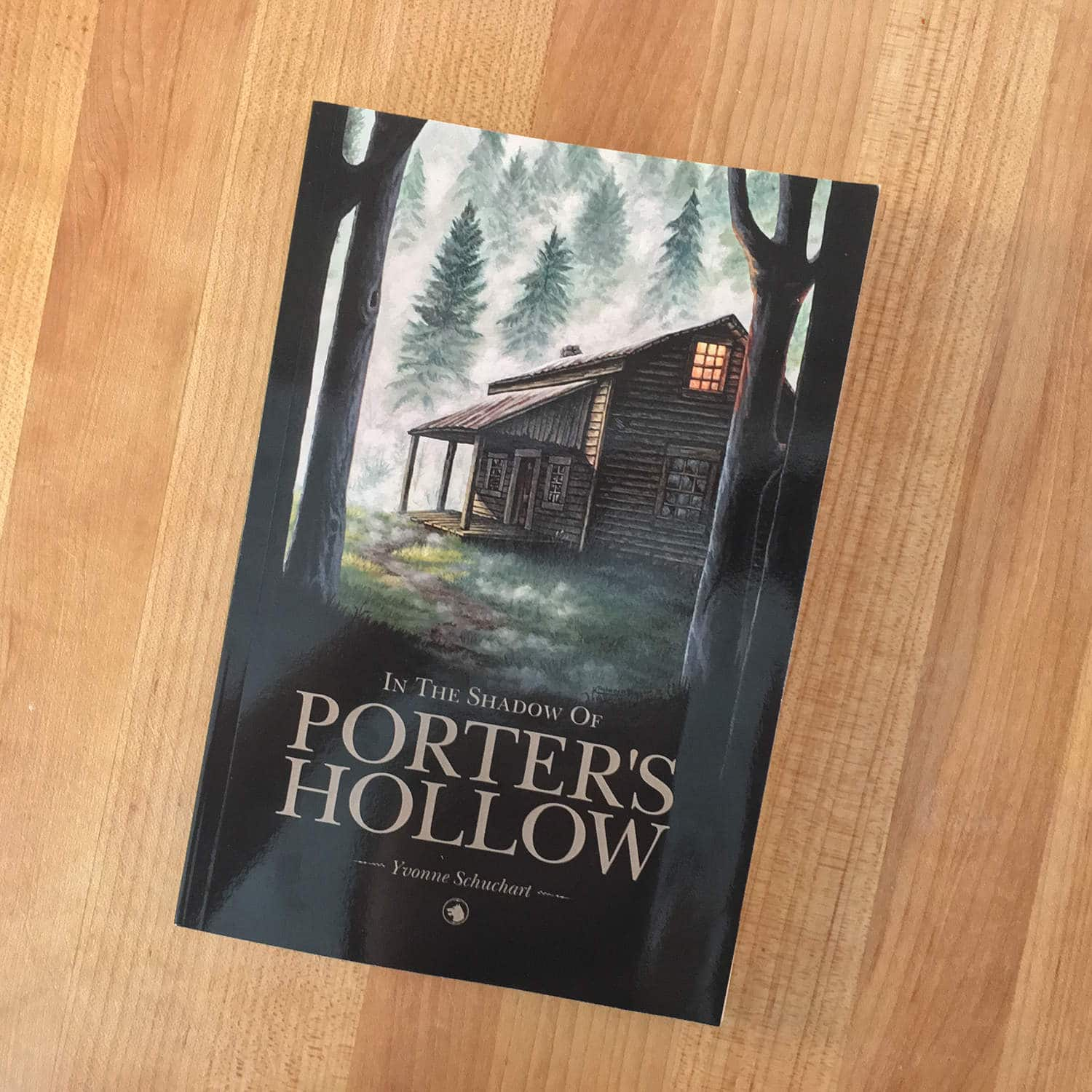 In the Shadow of Porter's Hollow Paperback Book - Cover Art Illustrator