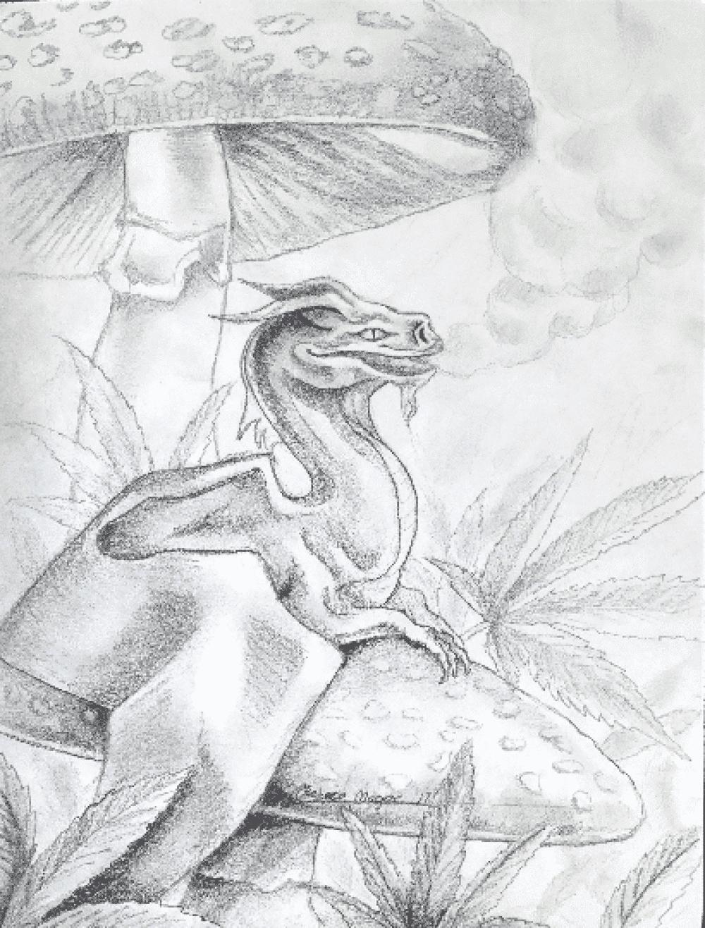 Tiny Dragon Sketch